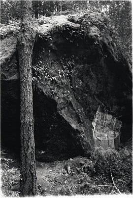 Cazadero, Ca  Vintage Sign Poster