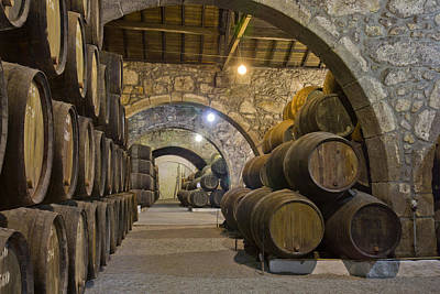 Cellar With Wine Barrels Poster