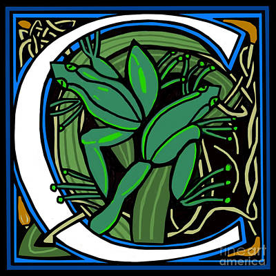 Celt Frog Letter C Poster by Donna Huntriss