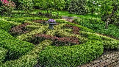 Celtic Topiary At Frelinghuysen Arboretum Poster