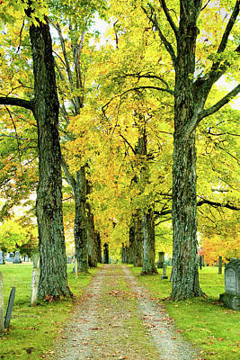 Poster featuring the photograph Cemetery Lane by Greg Fortier