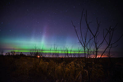 Poster featuring the photograph Central Minnesota Aurora by Alex Blondeau
