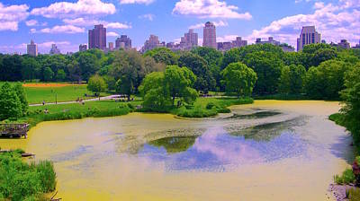 Central Park And Lake, Manhattan Ny Poster