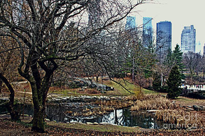 Central Park In January Poster