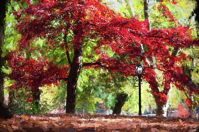 Central Park In Manhattan Poster
