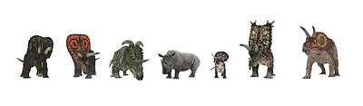 Cerapod Dinosaurs Compared To A Rhino Poster by Walter Myers