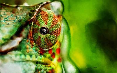 Chameleon ....  Poster by Jacqueline Schreiber