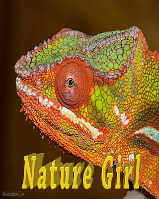 Chameleon Nature Girl Poster by LeeAnn McLaneGoetz McLaneGoetzStudioLLCcom