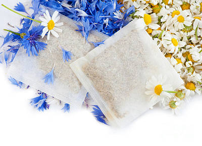 Chamomile With Cornflower Herbal Tea Sachets  Poster by Arletta Cwalina