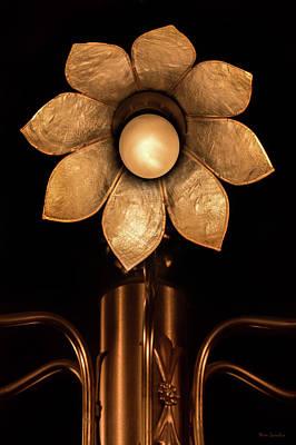 Chandelier Flower Poster
