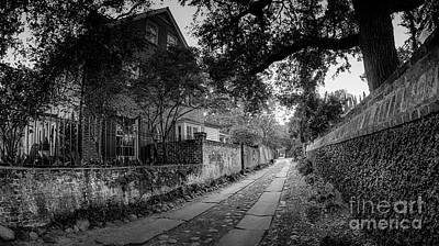 Charleston Ally Path Poster
