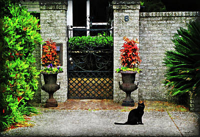 Charleston Cat Poster by Joan  Minchak