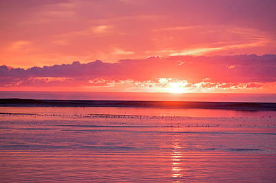 Chatham Ma Cape Cod Sunrise Poster