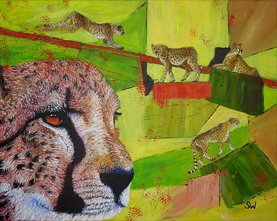 Cheetahs At Play Poster