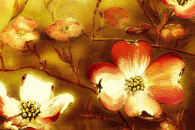 Cherokee Rose Dogwood - Glow Poster