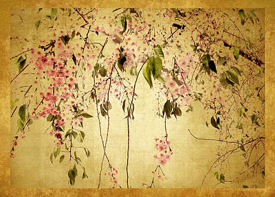 Cherry Blossom Poster by Jessica Jenney