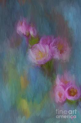 Cherry Blossom Poster by Jim  Hatch
