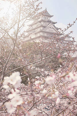 Cherry Blossoms At Himeji Castle Poster by Margaret Goodwin