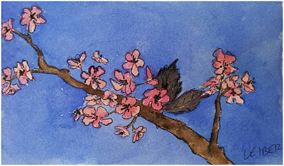 Cherry Blossoms In Bloom Poster by Donna Leiber