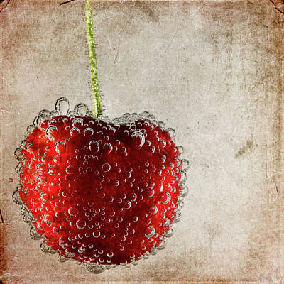 Cherry Fizz Poster by Al  Mueller