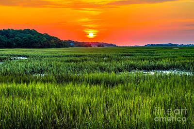 Cherry Grove Marsh Sunrise Poster