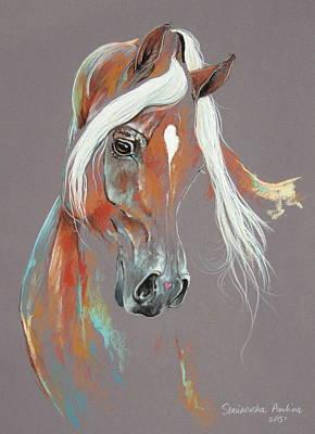 Chestnut Arabian Horse Poster