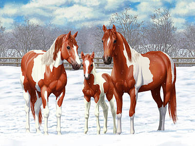 Chestnut Paint Horses In Winter Pasture Poster by Crista Forest