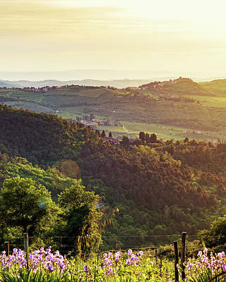 Chianti Italy Rolling Hillside At Sunset Poster