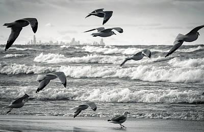 Chicago Framed In Flight Poster by Jackie Novak