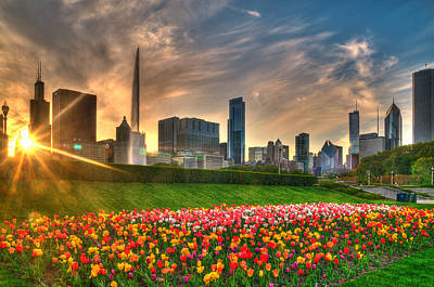 Chicago Spring Poster by Jeff Lewis