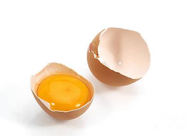 Chicken Egg Showing Yolk Poster by Gerard Lacz