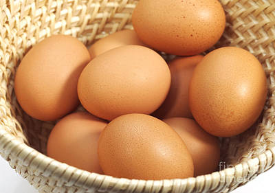 Chicken Eggs In A Basket Poster by Gerard Lacz