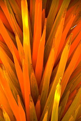Chihuly 8 Detail Poster