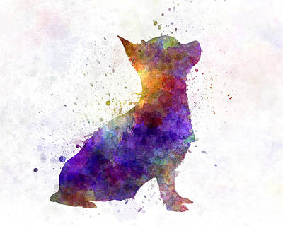 Chihuahua 01 In Watercolor Poster