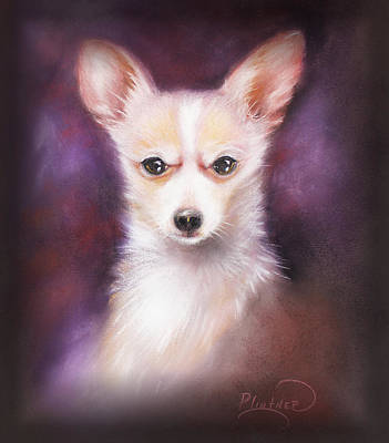 Poster featuring the drawing Chihuahua No. 1 by Patricia Lintner