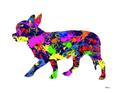 Chihuahua Paint Splatter Poster