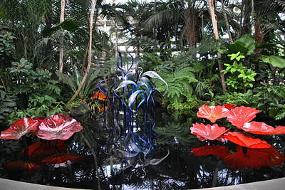 Chihuly 7 Poster
