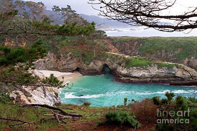 China Cove At Point Lobos Poster