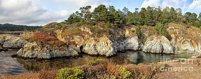 China Cove, Point Lobos Poster