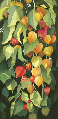 Chinese Lanterns Poster by Anne Havard
