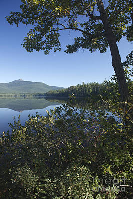Chocorua Lake - Tamworth New Hampshire Poster