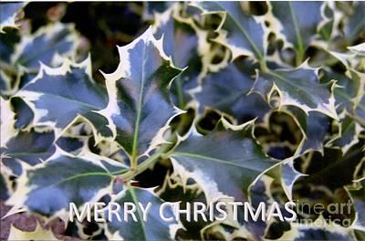 Christmas Card 2 - 2011 Poster