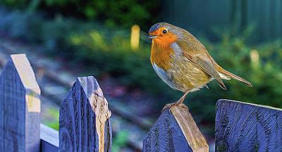 Christmas Robin. Poster
