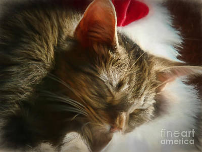 Christmas Slumber Poster by Kelley Freel-Ebner