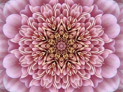 Chrysanthemum Kaleidoscope Poster