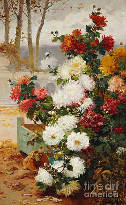 Chrysanthemums In A Walled Garden Poster by Eugene Henri Cauchois