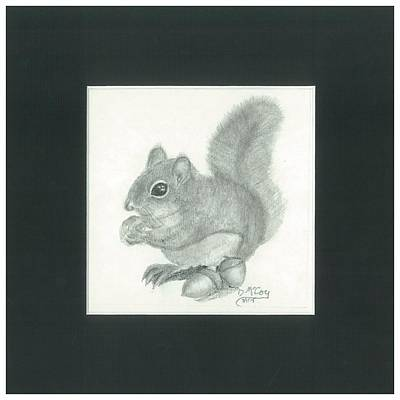 Chubby Squirrel With Acorns Poster