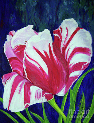 Chucks Tulip Poster by Lisa Rose Musselwhite