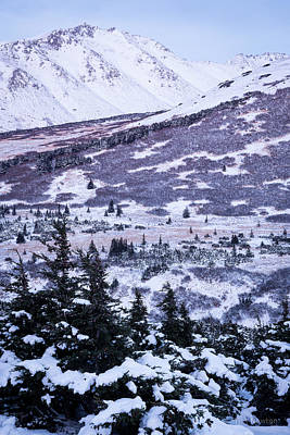 Chugach In Alpenglow Poster