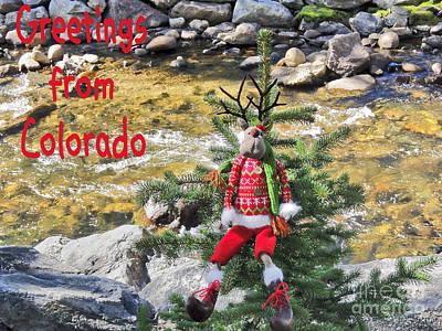 Chumps Christmas Poster